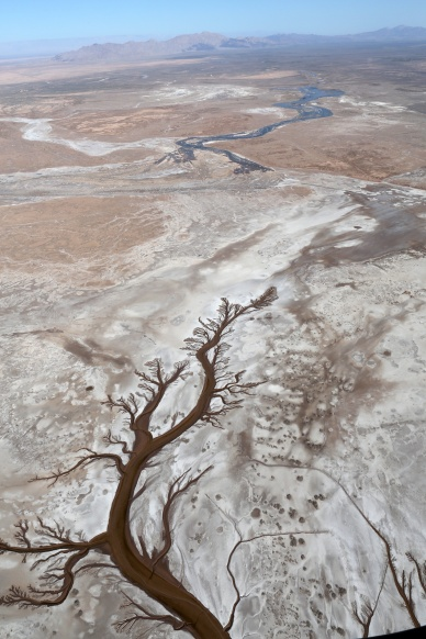 Colorado river reaches sea for first time in decades